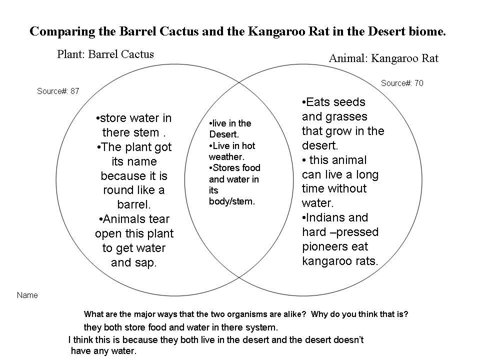 Vhecosystems    Desert